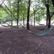 To już ostatni weekendw Zielonym Jazdowie. Koniec leżakownia, pikinikowania i jedzenia eko. Tegoroczna edycja Zielonego Jazdowa skończyła się pieczoną dynią i wystawą pokonkursową ART TECH DESIGN, organizowanej przez Fundację Aeris […]