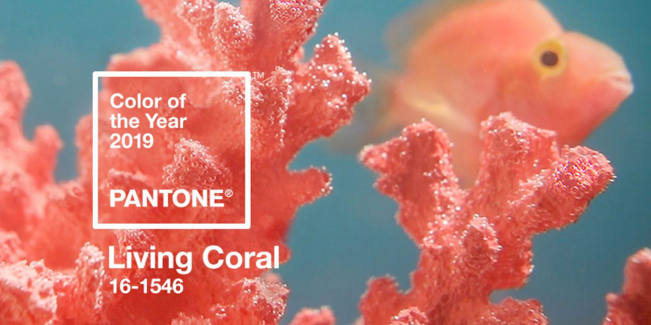 Living Coral (16-1546)